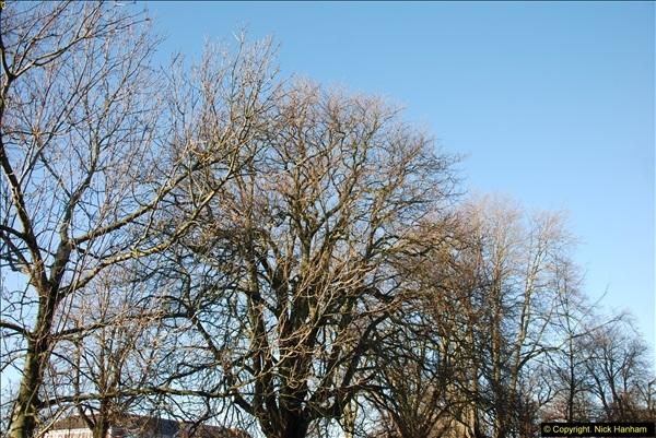 2014-01-19 Torquay, Devon.  (1)196