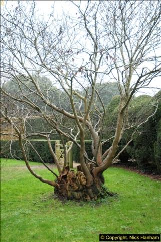 2014-01-30 Montacute House, Montacute, Somerset.  (4)204