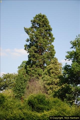 2014-07-22 Dumbleton Hall, Dumbleton, Worcestershire.  (1)237