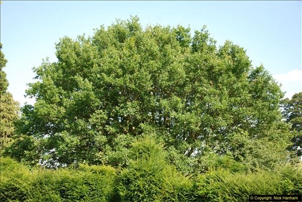 2014-07-22 Dumbleton Hall, Dumbleton, Worcestershire.  (2)238