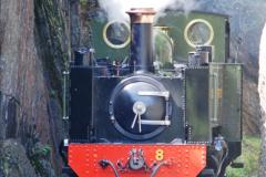 2017-05-03 Vale of Rheidol Railway. (37)037