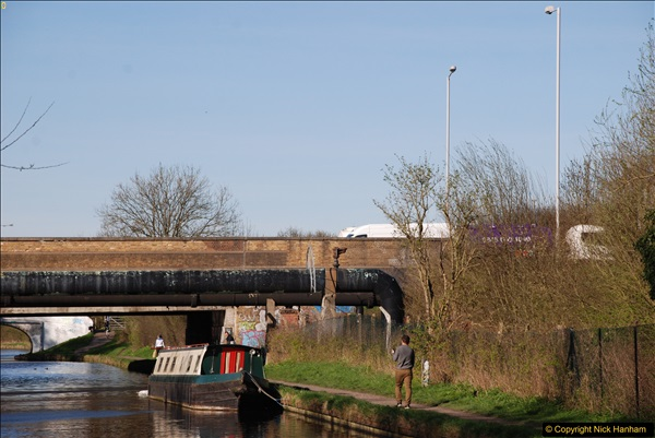 2017-03-25 On the Grand Union Canal near Uxbridge, Middlesex.  (160)322