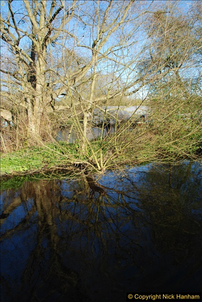 2017-03-25 On the Grand Union Canal near Uxbridge, Middlesex.  (184)346
