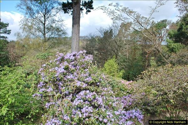 2018-04-25 Castle Drogo NT, Drewsteignton, Devon.  (12)110
