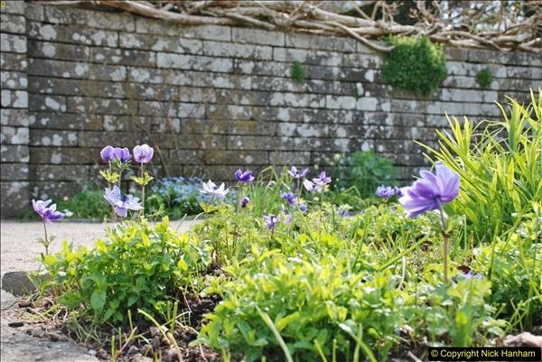 2018-04-25 Castle Drogo NT, Drewsteignton, Devon.  (18)116