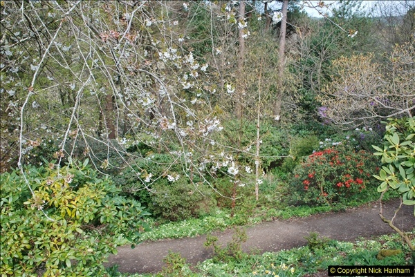 2018-04-25 Castle Drogo NT, Drewsteignton, Devon.  (9)107
