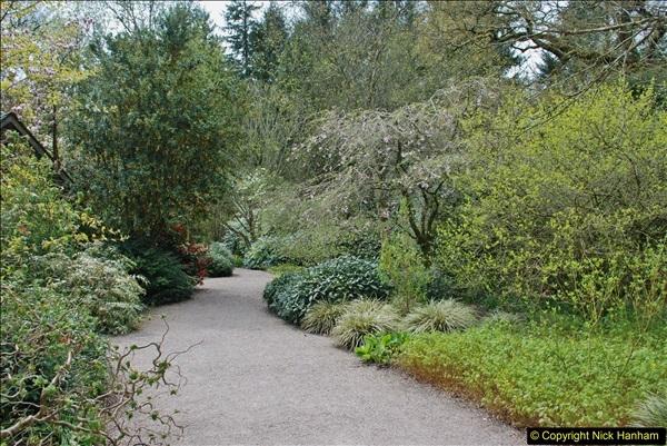 2018-04-22 RHS Rosemoor Gardens, Great Torrington, Devon.   (29)029