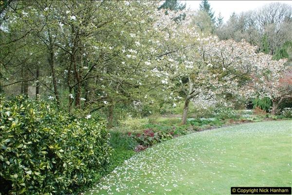 2018-04-22 RHS Rosemoor Gardens, Great Torrington, Devon.   (32)032
