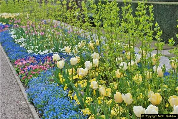 2018-04-22 RHS Rosemoor Gardens, Great Torrington, Devon.   (4)004