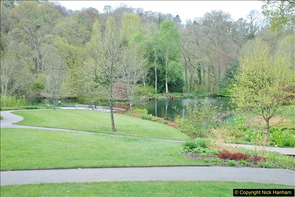 2018-04-22 RHS Rosemoor Gardens, Great Torrington, Devon.   (44)044