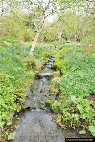 2018-04-22 RHS Rosemoor Gardens, Great Torrington, Devon.   (48)048
