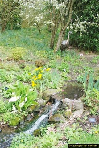 2018-04-22 RHS Rosemoor Gardens, Great Torrington, Devon.   (49)049