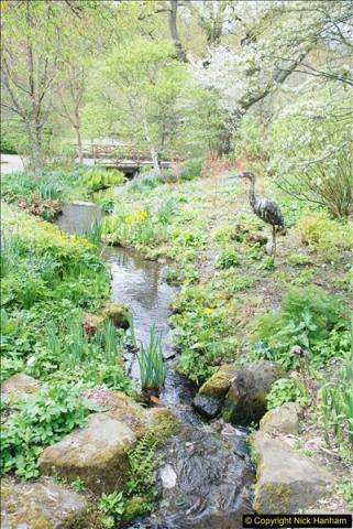 2018-04-22 RHS Rosemoor Gardens, Great Torrington, Devon.   (50)050