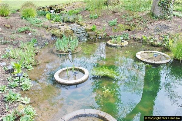 2018-04-22 RHS Rosemoor Gardens, Great Torrington, Devon.   (65)065