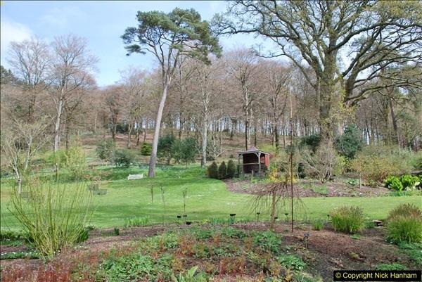 2018-04-22 RHS Rosemoor Gardens, Great Torrington, Devon.   (66)066