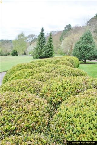 2018-04-22 RHS Rosemoor Gardens, Great Torrington, Devon.   (77)077
