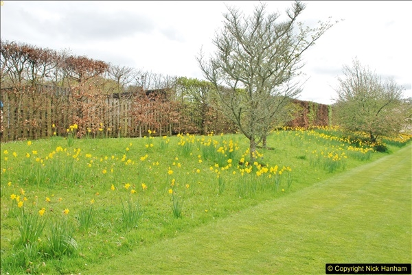 2018-04-22 RHS Rosemoor Gardens, Great Torrington, Devon.   (88)088