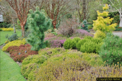 2018-04-22 RHS Rosemoor Gardens, Great Torrington, Devon.   (17)017