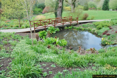 2018-04-22 RHS Rosemoor Gardens, Great Torrington, Devon.   (45)045
