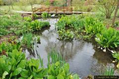 2018-04-22 RHS Rosemoor Gardens, Great Torrington, Devon.   (47)047