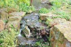 2018-04-22 RHS Rosemoor Gardens, Great Torrington, Devon.   (51)051