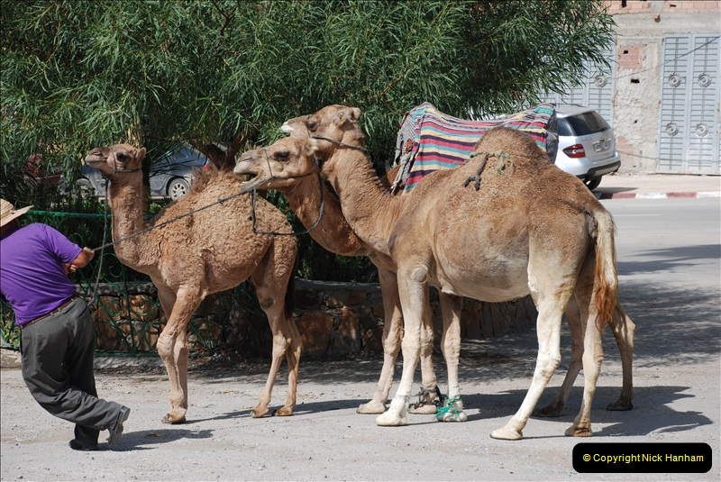 2008-09-27 Tangier, Morocco.  (18)469