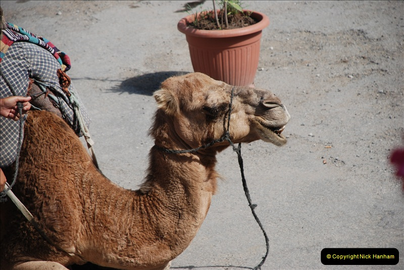 2008-09-27 Tangier, Morocco.  (23)474