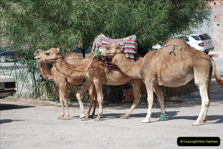 2008-09-27 Tangier, Morocco.  (19)470