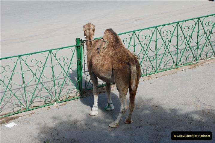 2008-09-27 Tangier, Morocco.  (21)472
