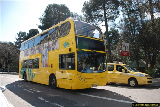 Yellow Buses 2016 - 2017