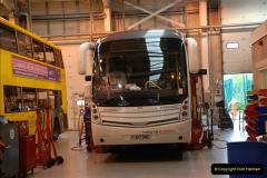 2012-05-09 Yellow Buses.  (11)11