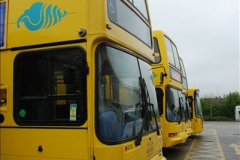 2012-05-09 Yellow Buses.  (46)46